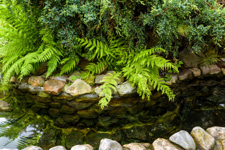 Natural stone landscaping with water in a garden