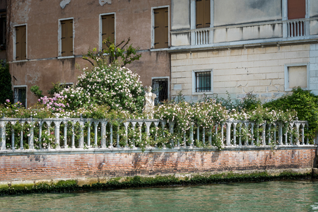 Beautiful garden on the Grand Canal in Venice, Italy. Grand Canal is one of the major water-traffic corridors in Venice.