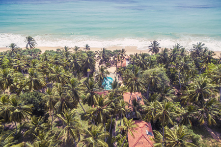 Aerial view of tropical beach with palms Banque d'images