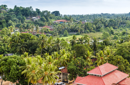 Landscape near Wewurukannala Vihara Buddhist temple in Dickwella town, Sri Lanka. Panoramic view of tropical forest in Sri Lanka. Buddhist travel destinations in Sri Lanka.