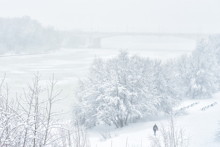 Winter landscape, Moscow, Russia. Man walks in the park near icy Moskva River during snowfall. Winter nature background. Scenic view of a snowy beach in winter. Frost and snowstorm in the winter city.