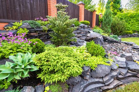 Landscape design of home garden close-up. Detail of beautiful landscaped garden with green plants, flowers and small waterfall. Natural stone landscaping in backyard in summer. Stok Fotoğraf