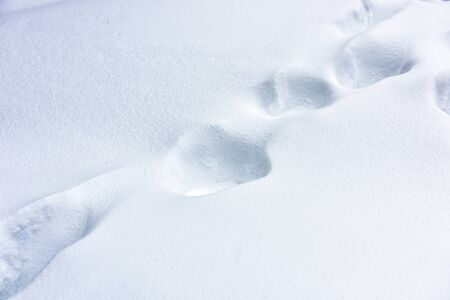 Snow texture abstract background. Plain snowy pure landscape. Smooth footprints on fresh snow cover after snowfall. Scene of white nature surface in winter. Stock Photo