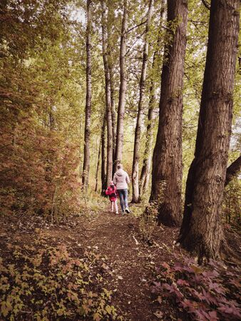 Family in autumn summer forest, back view. Woman and little girl walk away on path in woods. Child with mother go on footpath among trees. Scenery of nice fall park, concept of nature and season.
