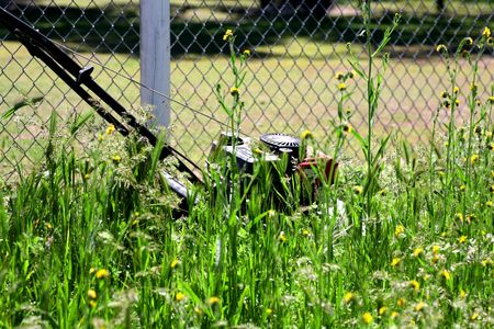 Lawn Mower Sitting in Tall Weeds and Flowers