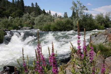 Rogue River Oregon - Class 4 Rapids