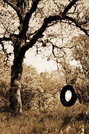Old Tire Swing - Childhood Memories