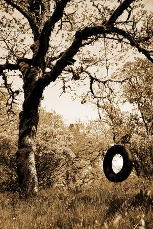 Old Tire Swing - Childhood Memories
