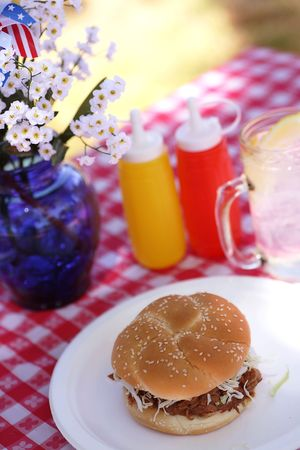 Old Fashioned Picnic - Sloppy Joe BBQ Pork Sandwich photo