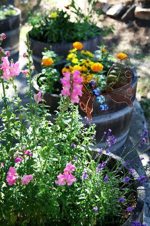 oak barrel: Oak Barrel Flower Garden Stock Photo