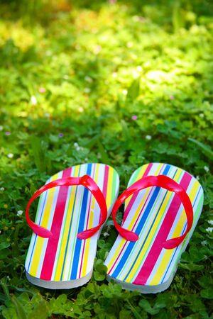 flops: Pair of Flip Flops on Lawn Stock Photo