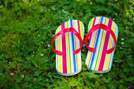 Pair of Flip Flops on Lawn Stock Photo - 3061597