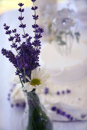 Lavender and Daisies  Flowers Stock Photo - 3242280