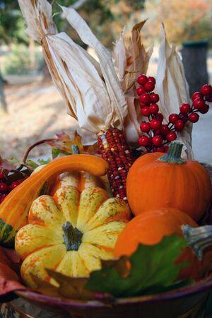 erntekorb: Colorful Thanksgiving Harvest Basket mit Maiskolben und K�rbise  Lizenzfreie Bilder