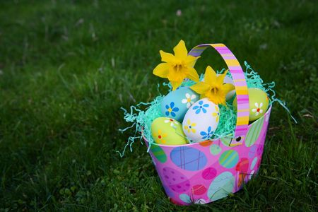 Colorful Easter Eggs in Grass with Basket with Daffodils Stock Photo - 3937080