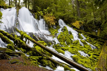 Clearwater Falls - Umpqua Scenic Byway in southern photo