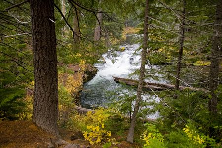 Wild and Scenic Rogue River in Southern Oregon in Fall photo