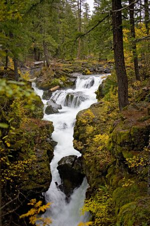 Rogue River Gorge in Southern, Oregon in Autum photo