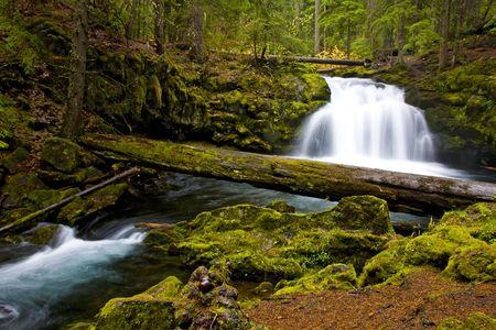 Whitehorse Falls - Umpqua Scenic Byway, Southern Oregon
