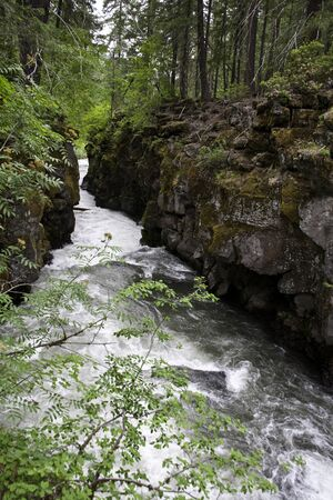 state of oregon: Rogue River Gorge - Union Creek, Oregon