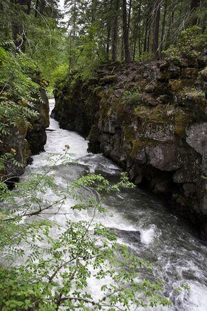 rogue: Rogue River Gorge - Union Creek, Oregon