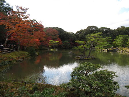 the autumn park in Kyoto photo