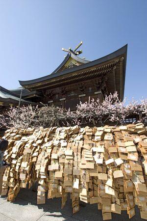 no pase: Yushima Tenjin de ciruela