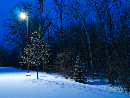 Winter Christmas like scene at dusk. Street light illuminates trees in early evening causing shadows on snow in Minnesota.