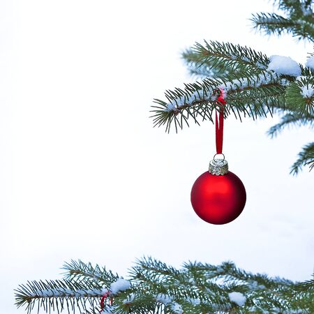 Close-up of red Christmas Bauble Ball hanging on snow covered pine tree branches outside.