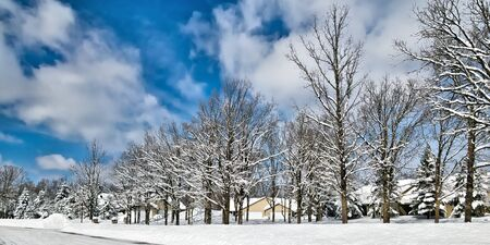 Snow piles in front of houses in Minnesota residential community after winter storms with snow covered trees and blue sky and a few clouds.