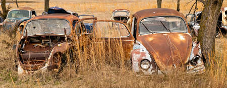 OKEMAH, OK - 2 MAR 2020: Wrecked Volkswagon cars in rusty and deteriorating condition, with missing parts and broken windows, are parked in a field of a salvage junkyard among trees and long grass.