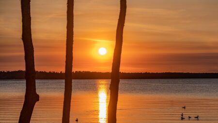 Gorgeous orange sunset over the lake visible through three trees