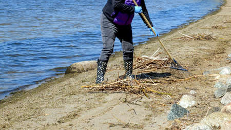 A woman using a rake to clean debris on the beach along the lake shore on a sunny day.