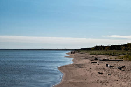 Lake Superior sand beach at Wisconsin Point with drift wood, blue water and trees on the horizon, on sunny autumn afternoon. 스톡 콘텐츠