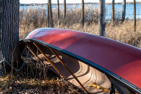 A red canoe rests quietly against a tree trunk near a Minnesota lake. 스톡 콘텐츠
