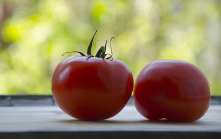 Two ripe, red tomatoes on a wood cutting board by the window towards a green, fresh bokeh