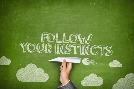 instincts: Follow your instincts concept on green blackboard with businessman hand holding paper plane