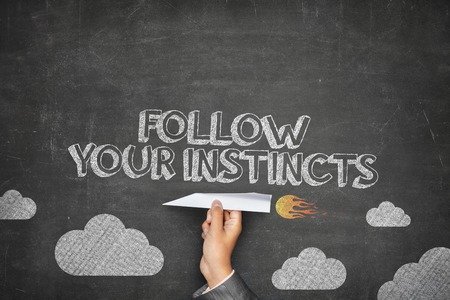 instincts: Follow your instincts concept on black blackboard with businessman hand holding paper plane