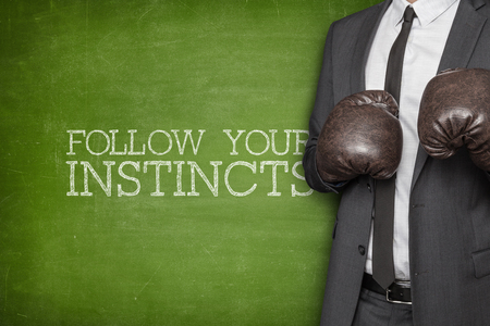 instincts: Follow your instincts on blackboard with businessman wearing boxing gloves
