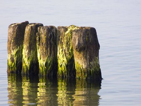 pales: Sea. Breakwaters of defending sandy beach in front of waves. Stock Photo