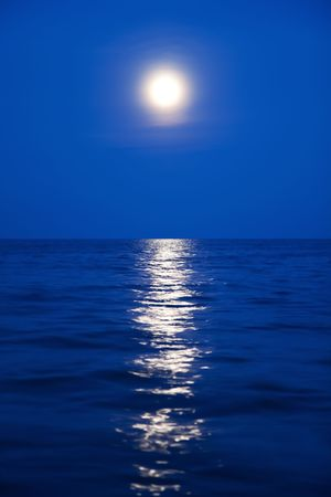 Moonlight and the sea photo