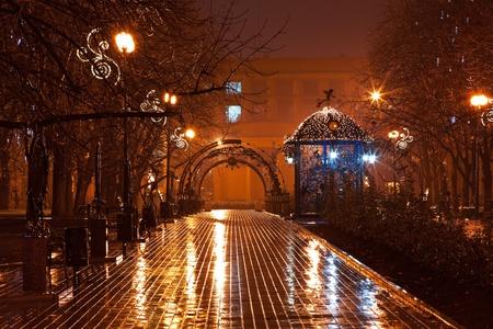 Allée décorée de nuit dans le parc de la ville