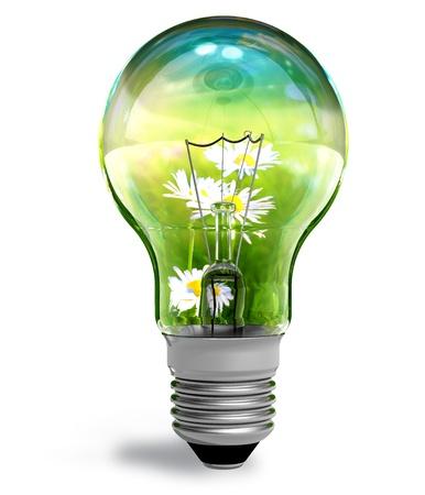 risparmio energetico: Concetto ecologico Archivio Fotografico