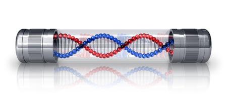 g�n�tique: Mol?le d'ADN dans la capsule herm?que