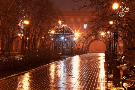 Scenic view of empty night alley in the city park in rain photo