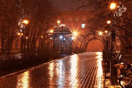 alejce: Scenic widok pustej alei noc w parku miejskim w deszczu Zdjęcie Seryjne