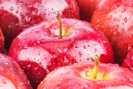 Macro of fresh red wet apples with water drops photo
