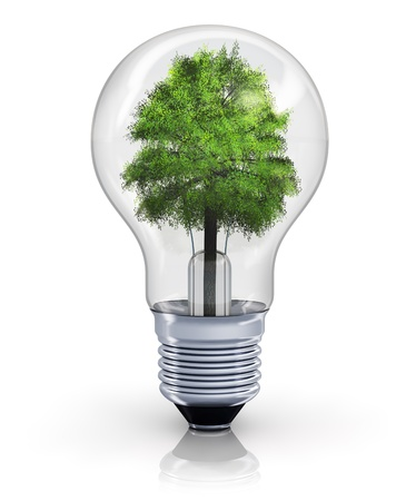 Creative ecological, environmental nature protection and power energy saving concept: green tree inside incandescent lightbulb isolated on white background with reflection effect photo