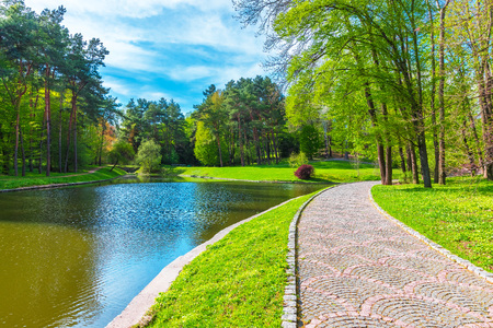 river: Scenic summer view of the park alley with forest and lake