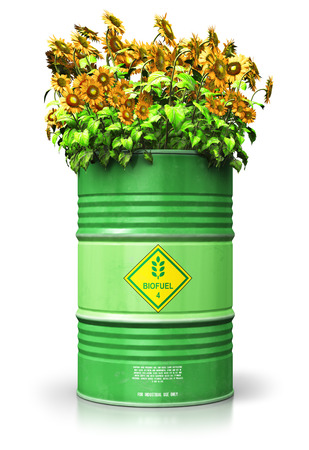 Creative abstract ecology, alternative sustainable energy and environment protection saving business concept: 3D render illustration of green metal biofuel drum or biodiesel barrel with yellow sunflowers flowers isolated on white background with reflection effect Stock Photo
